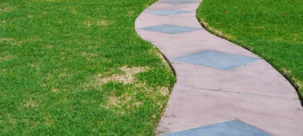 Lawn Dry Spots Quarterly Newsletter | Greenscapes of Southwest Florida, Inc.