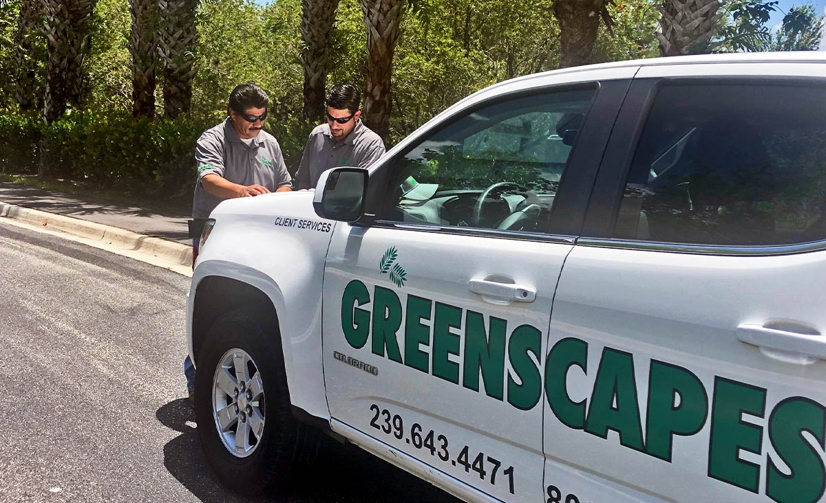 Our Dedicated Tree Service Professionals | Greenscapes of Southwest Florida, Inc.