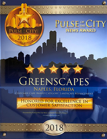 Excellence in Customer Satisfaction: Landscape Management (2018 Pulse of the City Award) | Greenscapes of Southwest Florida, Inc.