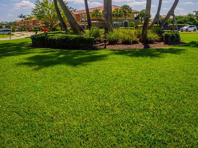 Sod Installation Landscape Management Service | Greenscapes of Southwest Florida, Inc.